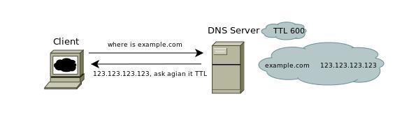 DNS TTL